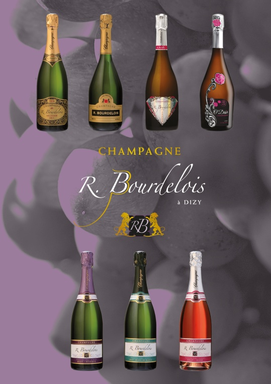 renoir bourdelois-001